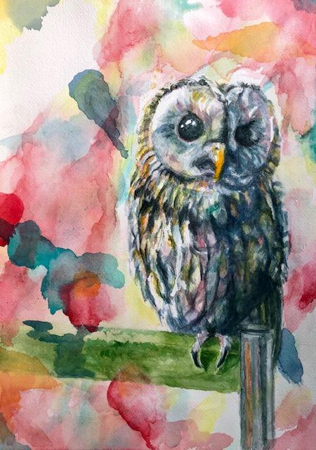 「owl」
