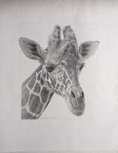 「Giraffe」【No.62】斎田純子