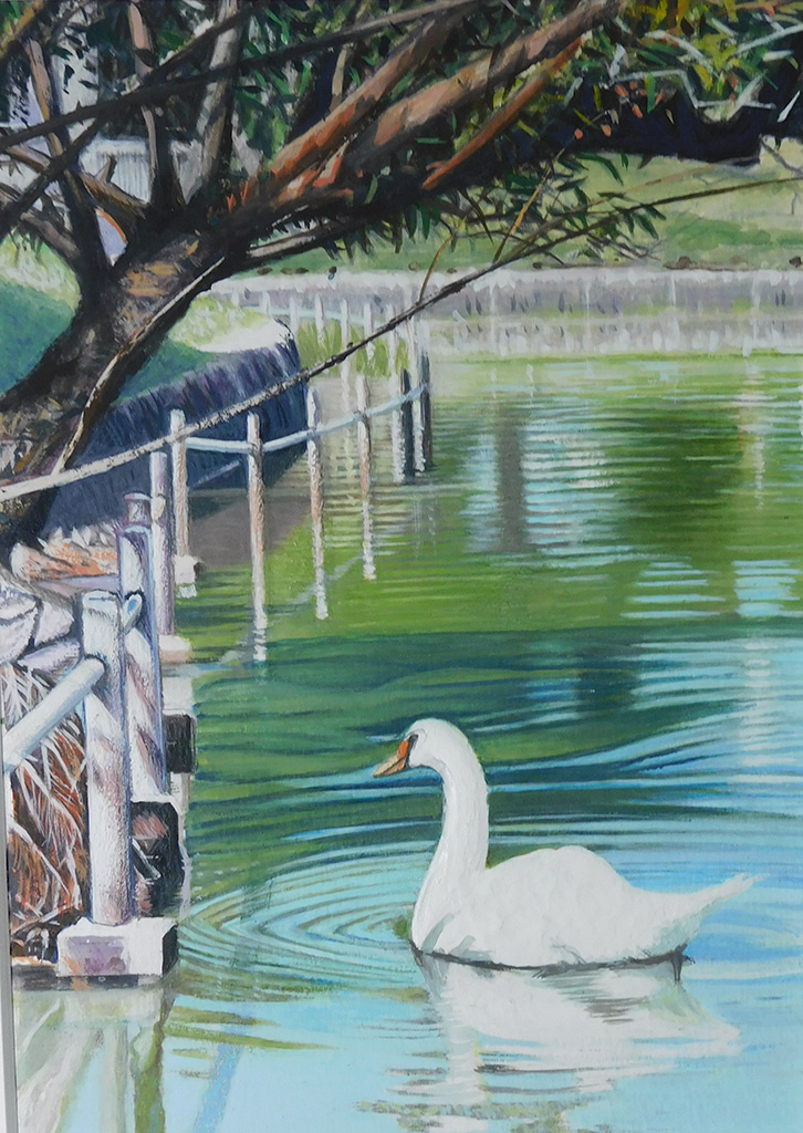 絵画レンタル販売 Art beans【No.141】とんぼ池公園の白鳥 (2)/七里享司