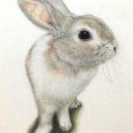 絵画レンタル販売 Art beans【No.221】「おいしいのちょうだい」/曽我美香